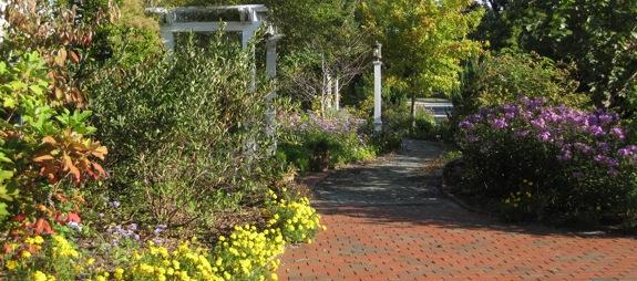 Fall-in-the-garden